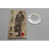 前川清 Kiyoshi Maekawa 男と女の破片